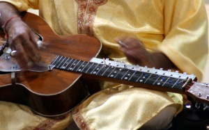 Pandit-Ji playing the Mohan Veena